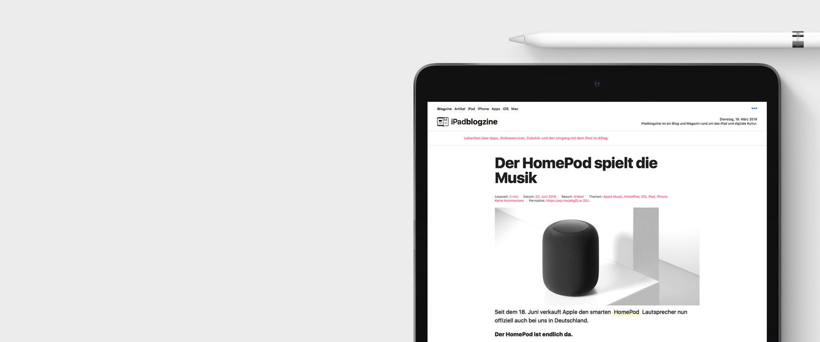 iPad Air 2019 Ansicht mit Webseite